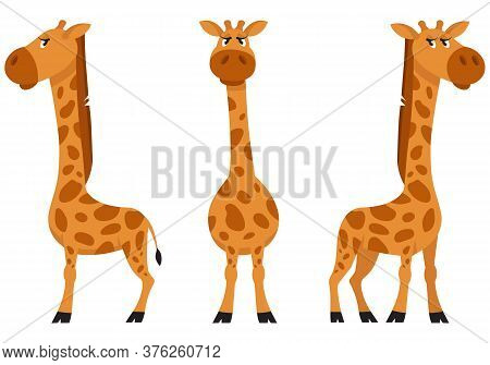 Female Giraffe In Different Poses. African Animal In Cartoon Style.