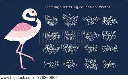 Summer Lettering Flamingo Girly Vector Set. Calligraphy Quote Collection. Perfect For Tshirt Print -
