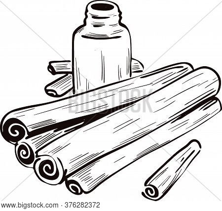 Cinnamon Dry Sticks And Bottle With Remedy Isolated Vector Illustration. Dried Bark Strips, Bark Pow