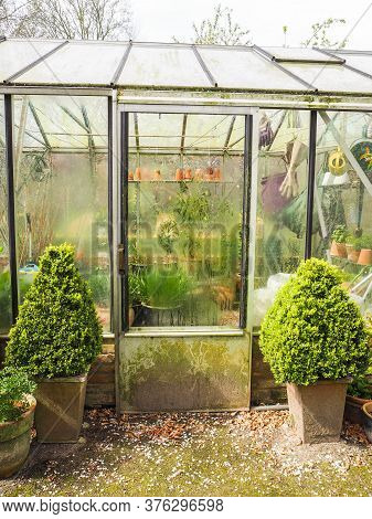 Small Glass Greenhouse With Steamed Up Windows Used For Hibernating Potted Plants, Belgium