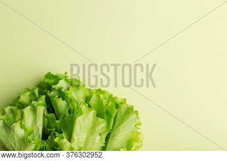 Copy Space With Green Lettuce At Green Background. Top View, Flat Lay, Lay Out, Copy Space And Place