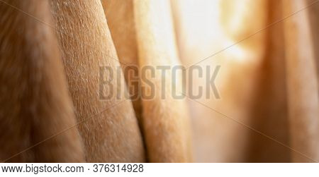 The Wool Fur Brown Earth Tone Carpet Or Decorate Inside Home And Office.
