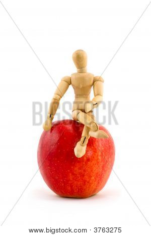 Gala Apple And Mini Mannequin