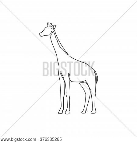 One Continuous Line Drawing Of Cute Giraffe For National Zoo Logo Identity. Adorable Tall Animal Mas
