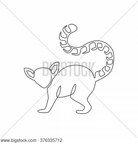 One Continuous Line Drawing Of Cute Lemur With Long Ring Tailed For Logo Identity. Marsupial Animal