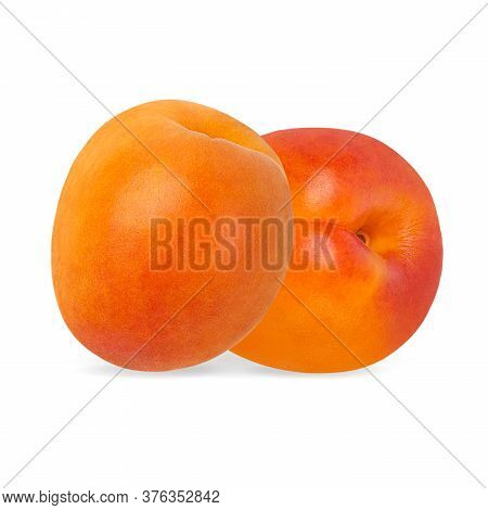 Apricots Isolated On White Background With Clipping Path