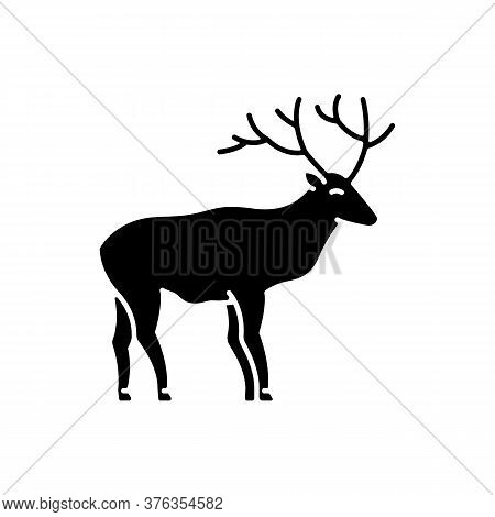 Deer Black Glyph Icon. Hoofed Ruminant Mammal, Herbivore Animal With Beautiful Antlers. Forest Wildl