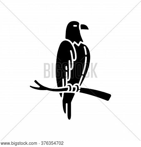 Eagle Black Glyph Icon. Dangerous Bird Of Prey, Flying Animal, Winged Predator. American National Si
