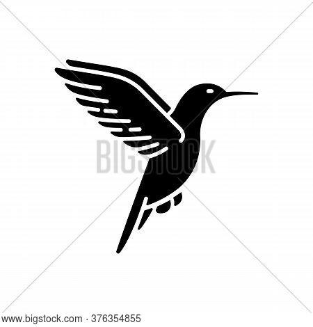 Hummingbird Black Glyph Icon. Small Exotic Bird, Ecuador Inhabitant. South And North America Fauna.