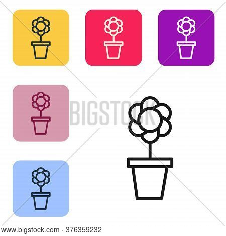 Black Line Flower In Pot Icon Isolated On White Background. Plant Growing In A Pot. Potted Plant Sig