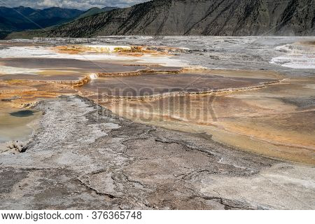 Canary Spring, Part Of The Upper Terraces At Mammoth Hot Springs Geologicial Areas In Yellowstone Na