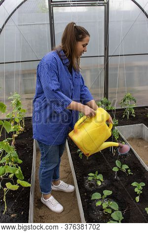 Young Girl Working In The Greenhouse, Take Care Of Vegetables, Horticulture