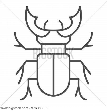 Beetle Stag Thin Line Icon, Bugs Concept, Deer Beetle Sign On White Background, Stag-beetle Icon In