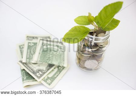Us Dollar Banknotes In Glass Jars There Are Many Coin And Trees Leaf Growing.plant Growing In Coins