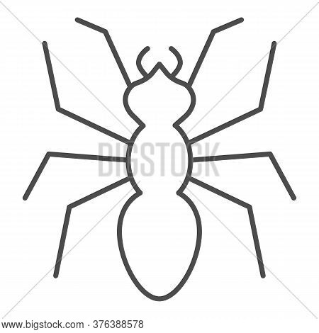 Ant Thin Line Icon, Insects Concept, Emmet Sign On White Background, Ant Silhouette Icon In Outline