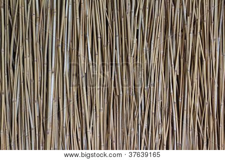 Natural Slim Bamboo Wall
