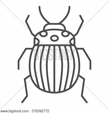 Colorado Potato Beetle Thin Line Icon, Bugs Concept, Striped Beetle Sign On White Background, Potato