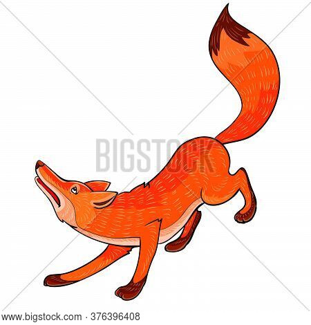 Red Sly Fox, Cartoon Illustration, Isolated Object On A White Background, Vector Illustration, Eps
