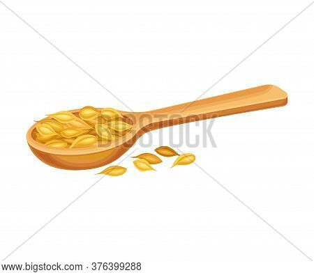Dry Seeds Of Cereals Or Grain Crops Rested In Wooden Spoon Vector Illustration