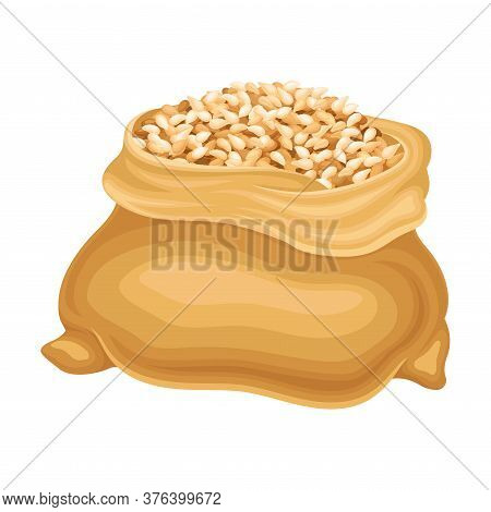 Dry Seeds Of Cereals Or Grain Crops In Sack Vector Illustration