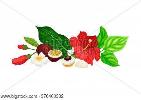 Palm Leaves With Hibiscus And Plumeria Flowers And Fruits Hawaiian Vector Composition