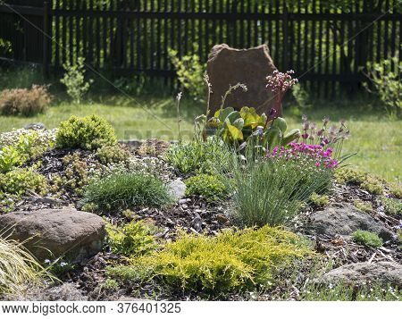 Spring Garden With Beautiful Rock Garden In Full Bloom With Pink Phlox, Armeria Maritima, Sea Thrift
