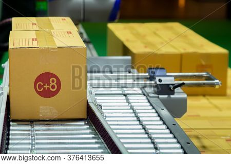 C+8 Size Cardboard Box Of Product Packaging Moving On Conveyor Belt Of Automatic Packing Machine In