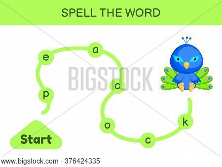 Maze For Kids. Spelling Word Game Template. Learn To Read Word Peacock, Printable Worksheet. Activit