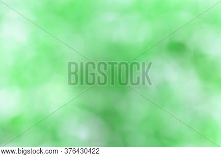 Green Blurred Background. Green Optical Blur Fon From Nature Leaves Out Of Focus.