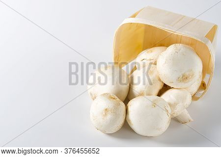 White Mushrooms Champignons In Wooden Basket On A Light Background. Close Up With Copy Space. Packed