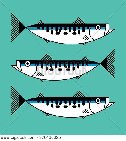 Fresh Atlantic Mackerel Sea Fish Isolated, Icon, Graphic Symbol, Seafood Packaging Concept, Hand Hra
