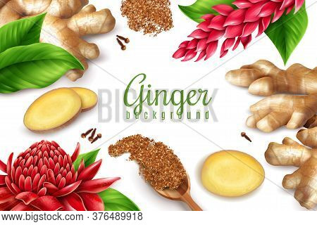 Organic Ginger Root Leaves Flowers Clove Spice Realistic Health Benefits Advertising Composition Whi