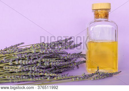 Lavender Essential Oil, A Bottle And Lavender Bouquet On Violet Background