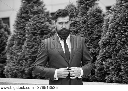 Bow Tie Only. Businessman In Nature. Energy Efficiency Concept. Bearded Man In Jacket Near Cypress T