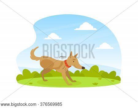 Cute Dog Scratching Its Paw On Lawn In Backyard On Beautiful Summer Landscape Flat Vector Illustrati