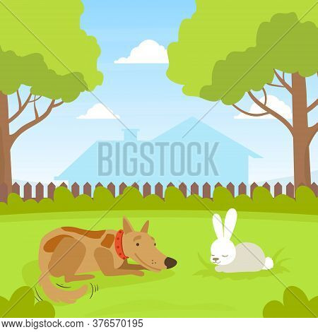 Cute Dog Looking At White Rabbit Sitting On Lawn In Backyard, Beautiful Summer Landscape Flat Vector