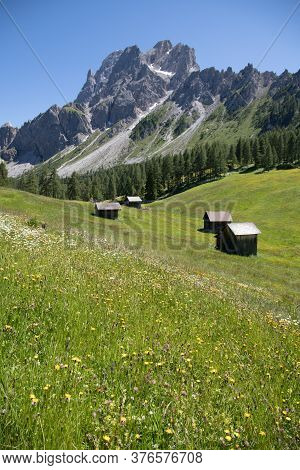 Scenery Of Italian Dolomites, Flowering Meadows And Forests On A Background Of Rock Massifs With Blu