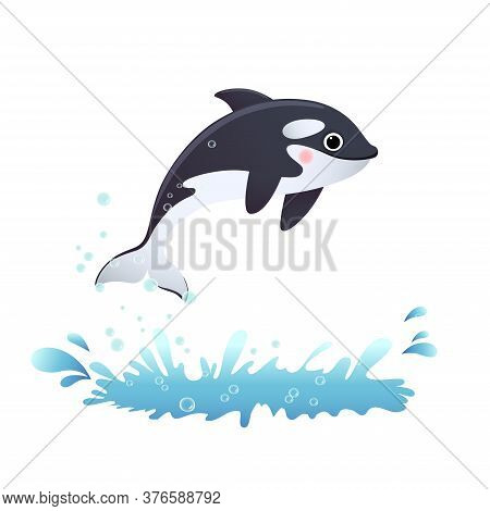 Vector Illustration Cute Cartoon Killer Whale Jumping Out Of The Sea.