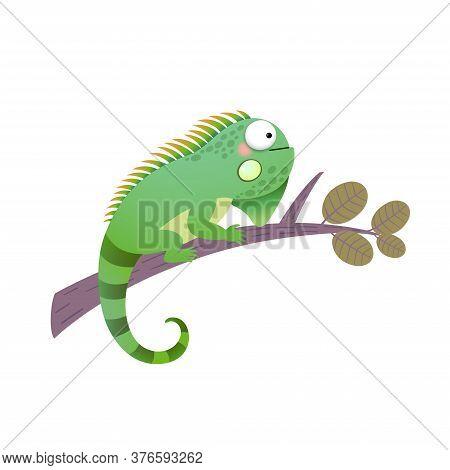 Vector Illustration Of A Cartoon Green Iguana On A Branch.
