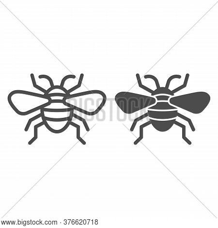 Insect Line And Solid Icon, Insects Concept, Bee Sign On White Background, Flying Insect Icon In Out