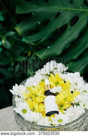 Small Bottle Of Revitalizing Soothing Serum In Glass Bowl With White And Yellow Flowers