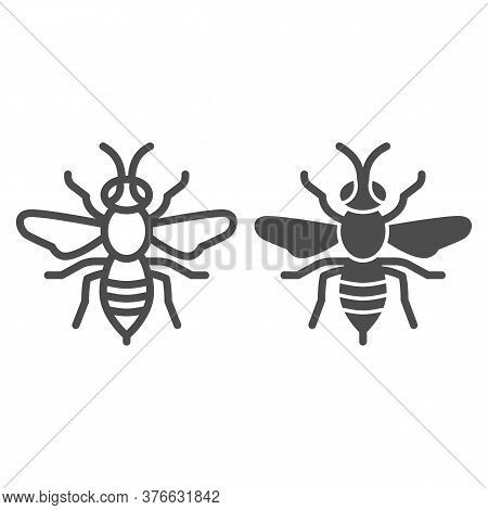 Wasp Line And Solid Icon, Insects Concept, Bee Sign On White Background, Wasp Insect Icon In Outline
