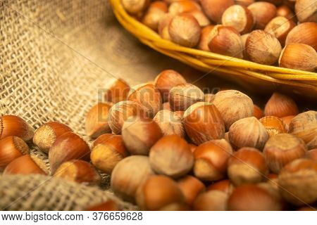 Hazelnuts In A Wicker Basket And Hazelnuts Scattered On A Background Of Coarse-textured Burlap. Clos