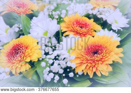 School Is Coming Soon. Delivery Of Bouquets White And Orange Flowers In Green Leaves Tinted Selectiv