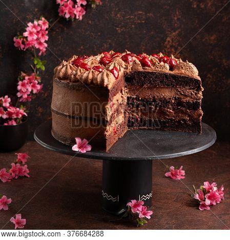 Homemade Layered Dark Chocolate Cake With Sour Cherries Already Cut