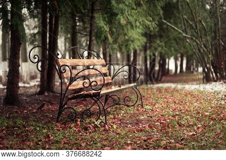 Lonely Wrought Iron Bench In The Park In Late Autumn. Fallen Leaves And The First Snowfall.