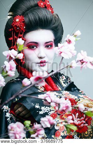 Young Pretty Geisha In Black Kimono Among Sakura, Asian Ethno Close Up On White Background