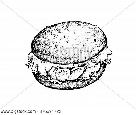Illustration Hand Drawn Sketch Of Delicious Prawn Burger Or Burger Shrimp With Lettuce And Cheese On
