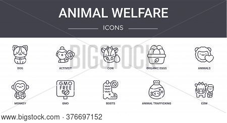 Animal Welfare Concept Line Icons Set. Contains Icons Usable For Web, Logo, Ui Ux Such As Activist,