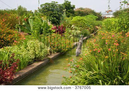 Fish Canal Garden